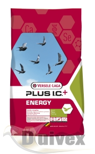 Lotowa - Energy Plus I.C.+